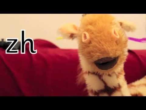 Geraldine the Giraffe learns /zh/