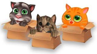 КТО ЛУЧШЕ БУБУ или мой говорящий ТОМ ЧЕЛЛЕНДЖ виртуальных котиков