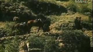 Берега (1 серия, Грузия-фильм, 1977 г.)