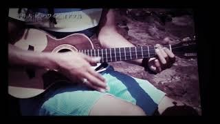 hiraidai Hawaii Makapuu Cape aloha マカプウ岬 ukulele I'mYours.