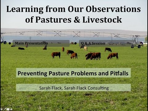 Preventing Pasture Problems on the Organic Dairy