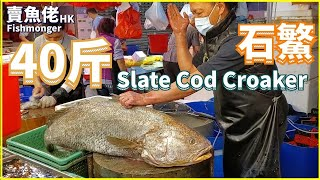 Chopping 24kg Slate Cod Croaker, Fish Maw worths USD1,300 【OH! Seafood 4K】