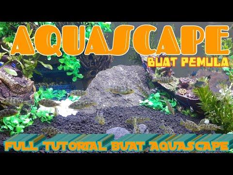 Bocah Ngapak#Tutorial bikin aquascape buat pemula - kenzie ...