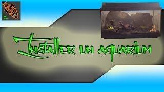 L'installation D'un Aquarium (pour Débutants) - Lyn' Aquariophilie