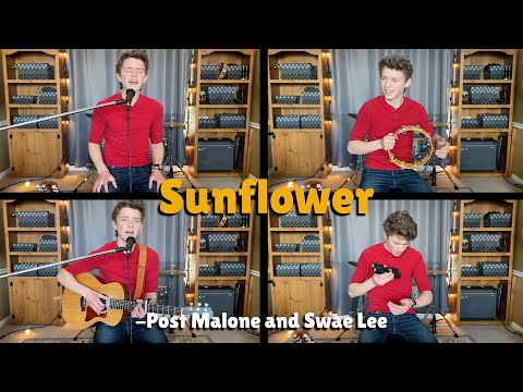 Sunflower - Post Malone and Swae Lee - Acoustic Version - Guitar, and Vocal Cover | Blake's Juke Box