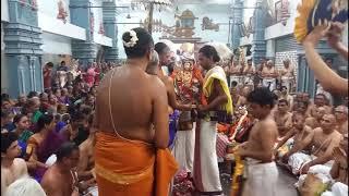 Gambar cover 51st #Paduka #Sahasram Mahotsavam | #Sri #Ahobila #Mutt #Triplicane | Sri #APN Swami