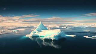 To the Arctic - To the Arctic Trailer and Interview with Director and Producers Greg and Shaun ... Thumbnail