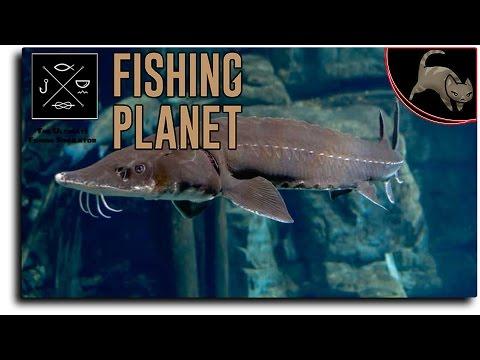 [Fishing Planet] Episode 10 - Saint Croix Lake, Michigan