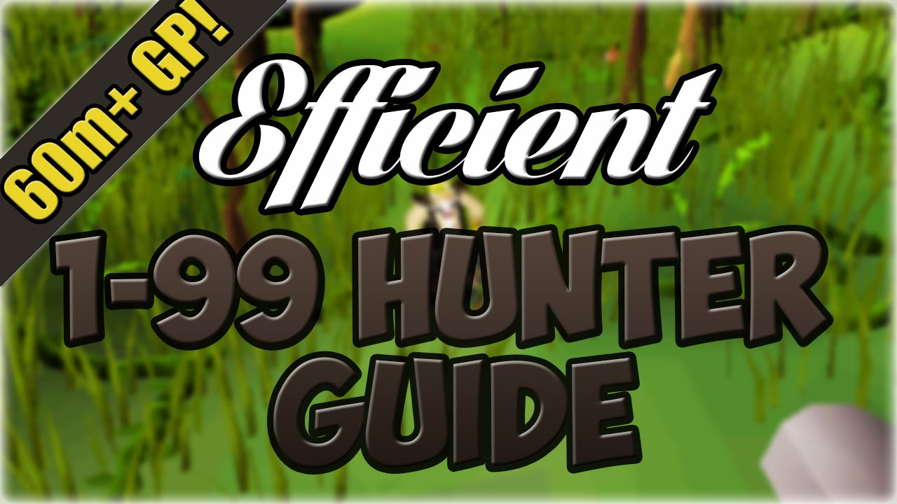Oldschool Runescape EFFICIENT 1 99 Hunter Guide