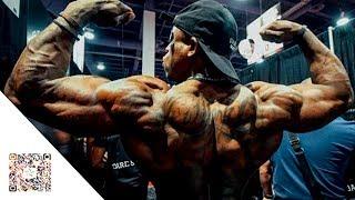 FIGHTING SPIRIT - Aesthetic Fitness Motivation
