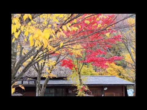 SHIRAKAWAGO, GIFU PREFECTURE, JAPAN, UNESCO world heritage