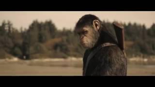 Фильм 2017 года. Планета обезьян Воина