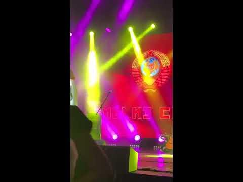 //www.youtube.com/embed/dgaomeWwjOo?rel=0