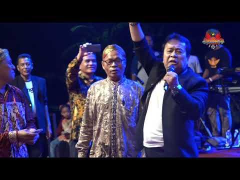 Mansyur S - Penantian Live Tegal bersama NEW DEWATA Pimp.DEDY JAYA