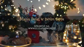 Magia Świąt w Twoim Domu | Kwiaciarnia Eliza Flowers | Spot Reklamowy