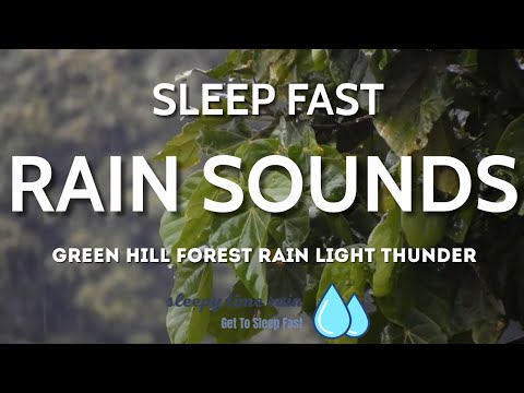 Green Hill Forest Rain Sounds, Thunder, Steady Rain Sounds for Insomnia, Study, Lower Stress