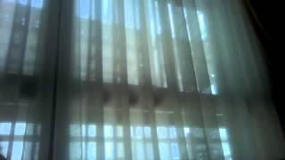 Vídeo de cámara web del 1 de mayo de 2014, 12:45