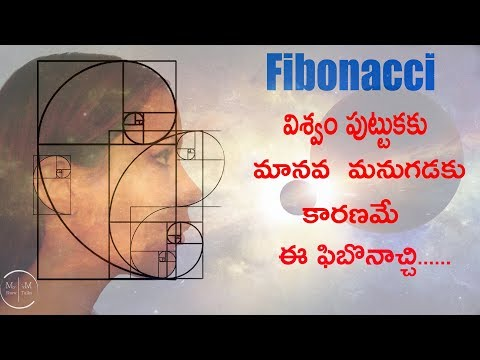 Fibonacci Sequence and Golden Ration in our daily life | Why 1.6180 Related To God | MyShowMyTalks