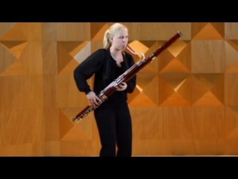 De Instrumenten Uit Het Orkest: Fagot - Orkest van het Oosten