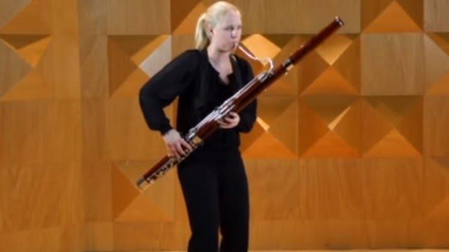 De Instrumenten Uit Het Orkest: Fagot - Orkest van het ...  De Instrumenten...