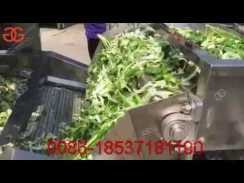 Leafy Vegetable Washing Machine| Fruit Vegetable Air Bubble Washing Drying Machine GELGOOG