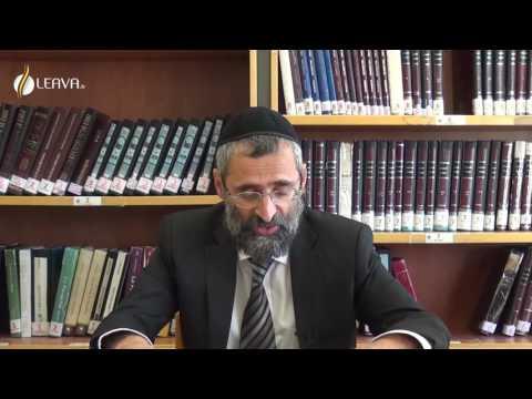 LA CONFERENCE INTERNATIONALE SUR ISRAEL rav ron CHAYA