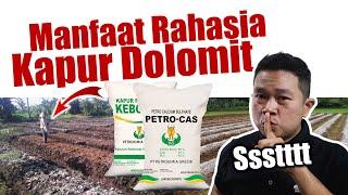 Download lagu Jarang Diketahui.! Manfaat Rahasia Kapur Dolomit / Kapur Pertanian - Pupuk Pembenah Tanah