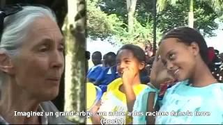 Roots and Shoots : programme éducatif, humanitaire et environnemental