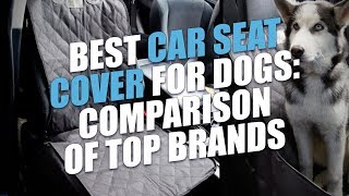 Best Car Seat Cover for Dogs Review and Testing (2018)