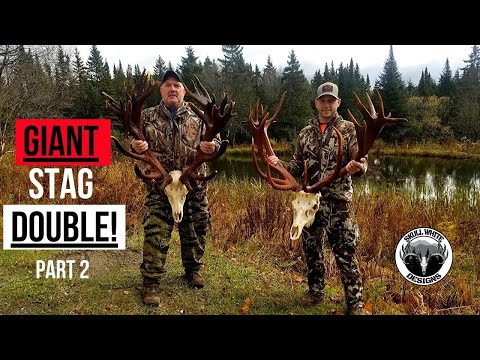 Hunting Giant Red Stag| DOUBLE DOWN! S1 #4