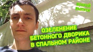 Дневной видеоблог Андрея Терентьева. Озеленение бетонного дворика в спальном районе(, 2015-06-02T11:40:09.000Z)