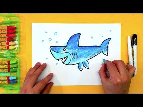 Как раскрасить акулу цветными карандашами