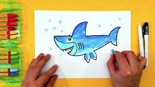 АКУЛА учимся рисовать с детьми / Урок рисования от РыбаКит