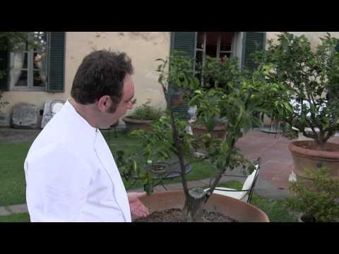 Il Canto's Paolo Lopriore shows Certosa di Maggiano