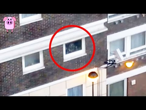 Thumbnail: 5 Ghosts Caught On CCTV