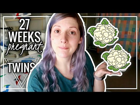 27 WEEKS HIGH RISK PREGNANCY WITH TWINS BELLY | Hospital Update | Twin Tuesday
