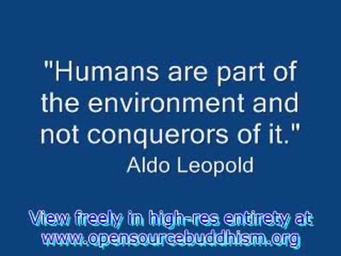 Environmental Ethics - YouTube