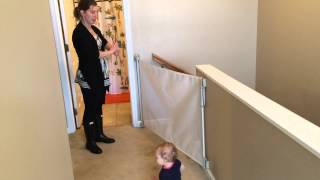 Dream Baby  Gate - Product Review