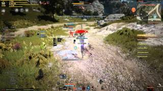 Black Desert Heartless vs Parabellum part 4