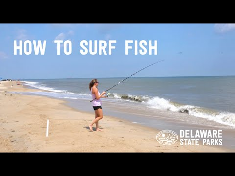 How To Surf Fish At Delaware State Parks