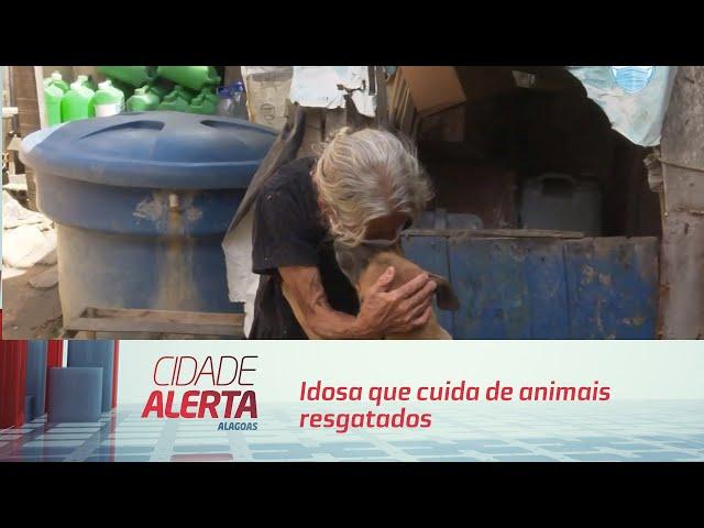 Idosa que cuida de animais resgatados nas ruas por adoção dos pets