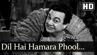 Dil Hai Hamara Phool Se Nazuk - Dara Singh - Faulad - Old Bollywood Songs - G.S. Kohli