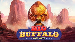 Big Buffalo Video Slot Game By Skywind Group