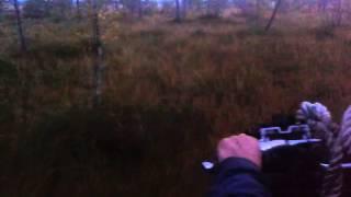 Каракат(Проба болота!, 2015-09-06T11:34:11.000Z)