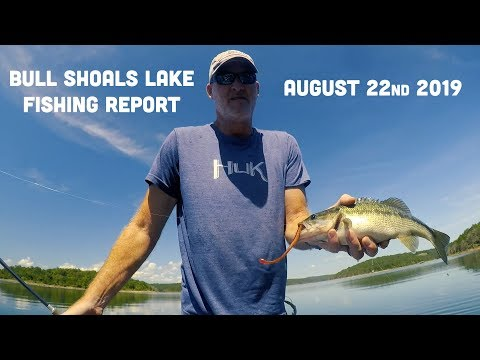 Late August Fishing Report | Bull Shoals Lake | Del Colvin