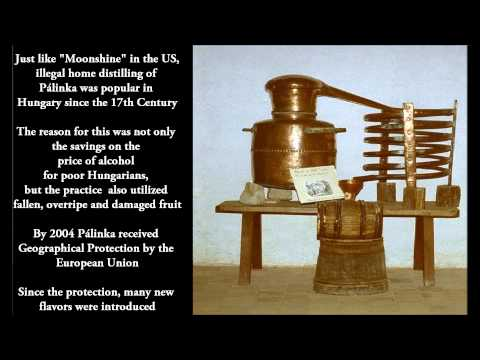 A Brief History of Palinka