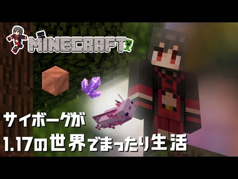 【Minecraft】1.17の世界で遊ぶ