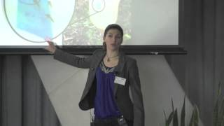2014 Three Minute Thesis winning presentation by Emily Johnston thumbnail