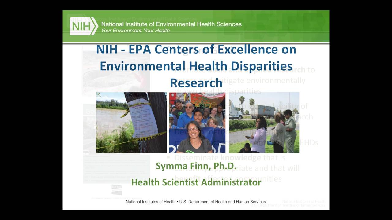 Kimberly Gray PhD National Institute Of Environmental Health Sciences Remote Presentation