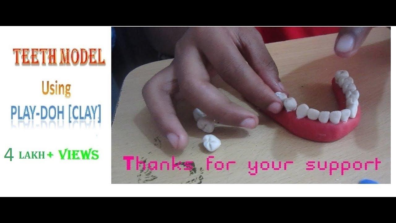 TEETH Model Making Using Clay(play-doh